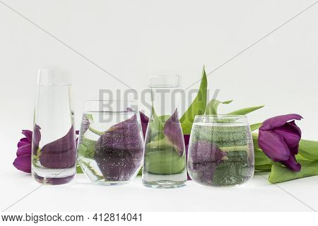 Object Distortion Through Transparent Glasses With Water.  Distorted Violet Tulips Lie Behind Glass
