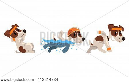 Cute Sportive Jack Russell Terrier Doing Sit-ups And Swimming Vector Set