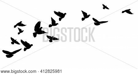 A Flying Flock Of Birds, Pigeons. Black Silhouettes. Vector Illustration