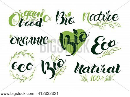 Set Of Vegan, Eco, Bio, Organic, Fresh, Healthy, 100 Percent, Natural Icons. Logo Lettering. Vector