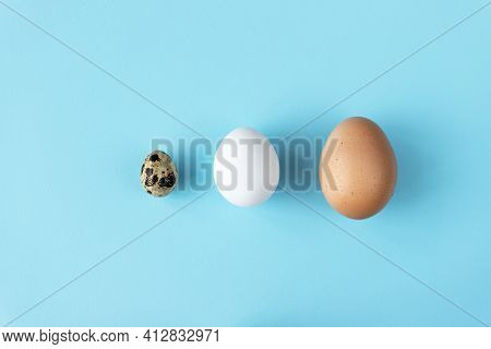 Three Type Of Different Birds Eggs Isolated On Blue Paper Background. Various Size And Kind Choice C