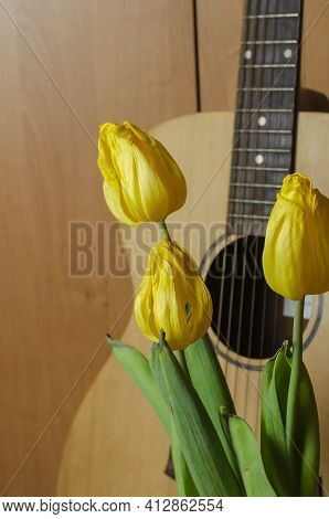 Bouquet Of Fading Flowers And An Acoustic Guitar On Brown Background. Three Yellow Tulips Upright. F