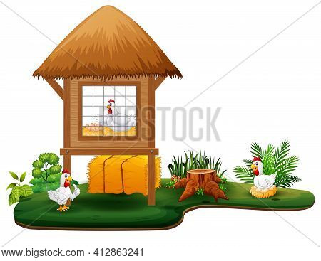 Chickens And Chicken Coop On White Background Illustration