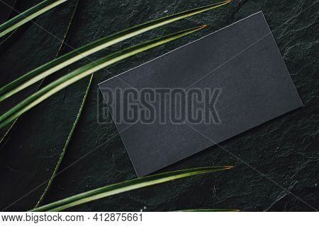 Black Business Card Flatlay On Dark Stone Background And Green Exotic Leaf, Luxury Branding Flat Lay