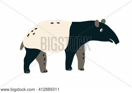 Malayan Tapir With Elongated Nose Trunk. Asian Animal Isolated On White Background. Colored Flat Vec