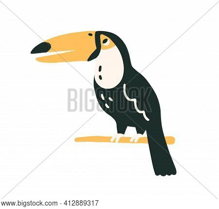 Black-feathered Toucan With Large Yellow Beak. Tropical Southern American Tucan Bird Sitting On Tree