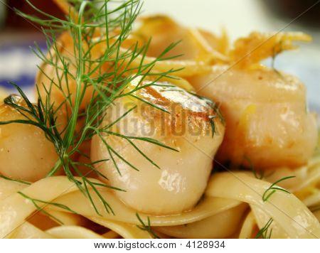 Fettucini With Scallops