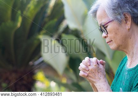 A Portrait Of An Elderly Woman Hands Joined Together While Standing In A Garden. Focus On Hands Wrin