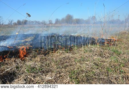 Dry Grass On Fire In Spring. Burning Dry Grass In Spring Is Quickly Getting Out Of Control.