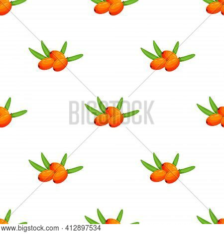 Seamless Pattern Of Sea Buckthorn. Natural Organic Sea Buckthorn Seamless Pattern Vector Illustratio