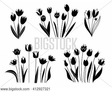 Floral Set. Sketches Of Flowers, Plants, Leaves. Hand Drawn Illustration. Silhouette Of Tulips In Bl