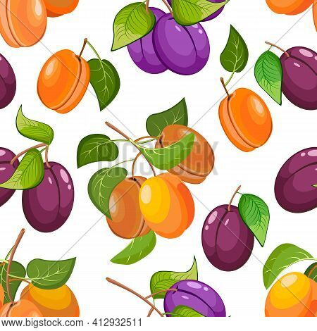 Pattern With Apricots And Plums.ripe Apricots And Plums In A Vector Pattern On A White Background.
