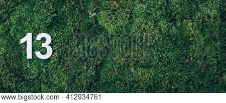 Ecology, Zero Waste. Green Grass, Digit Thirteen. Birthday Greeting Card With Inscription 13. Annive