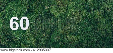 Green Grass, Digit Sixty. Birthday Greeting Card With Inscription 60. Anniversary Concept. Banner. T