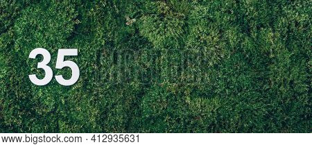 Green Grass, Digit Thirty-five. Birthday Greeting Card With Inscription 35. Anniversary Concept. Ban