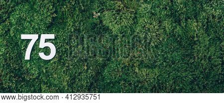 Green Grass, Digit Seventy-five. Birthday Greeting Card With Inscription 75. Anniversary Concept. Ba