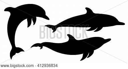 Dolphins Graphic Icons Set. Signs Swimming Dolphins Isolated On White Background. Sea Life Symbols.
