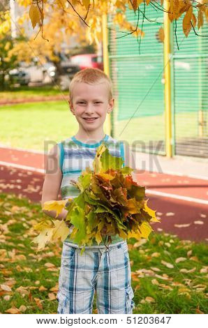 Adorable Boy Smiling And Holding Autumn Leaves