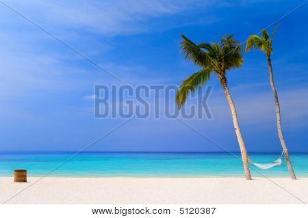 Hammock On A Tropical Beach