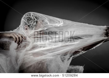 Arachnids creepy, naked man caught in spider web