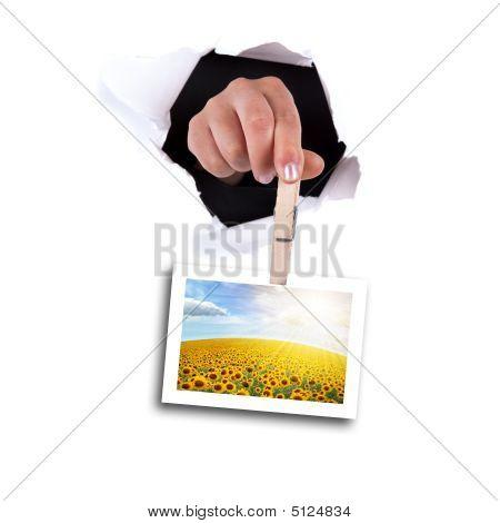Woman Hands Holding Clip Thru Wall Hole
