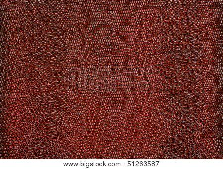 Snakeskin Print In Red