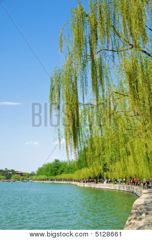 River Side At Summer Palace In Beijing