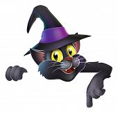 A happy cute Halloween black witch's cat wearing a witch's hat and pointing down at your banner or sign poster