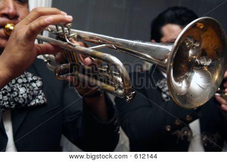 Mirachi Horn