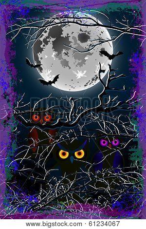 Halloween owl moon background