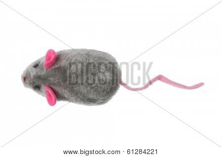 toy mouse on white background