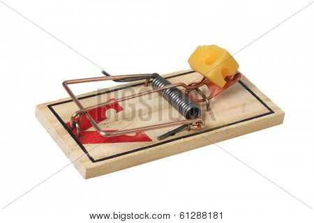 mouse trap with cheese on white