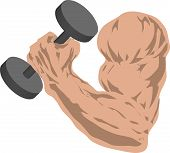 muscular arm grasping barbells poster