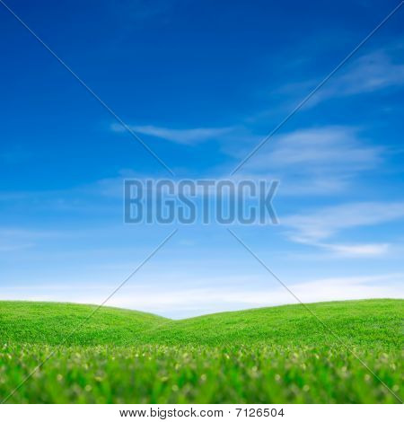 Sky And Green Grass