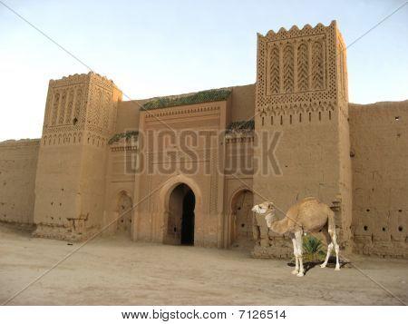 die Kasbah bei rissani