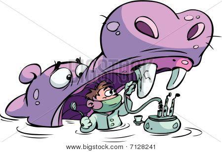 Dentist working on hippo