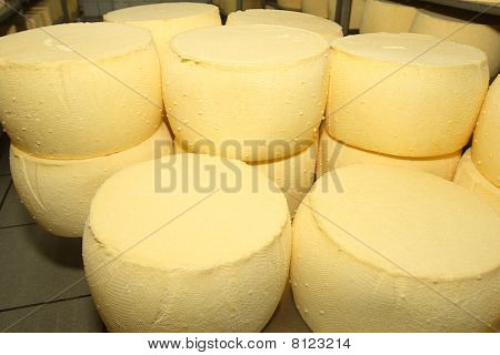 Swiss Cheese In Rows