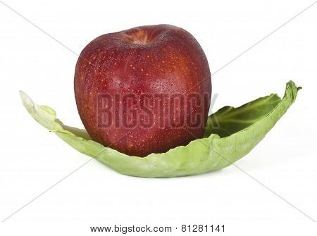 Apple Fruit