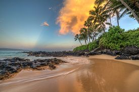 Secret Cove Makena Sunrise