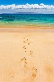 Footprints Leading To Paradise