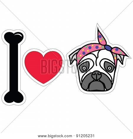 I love pug female pug with tie scarf