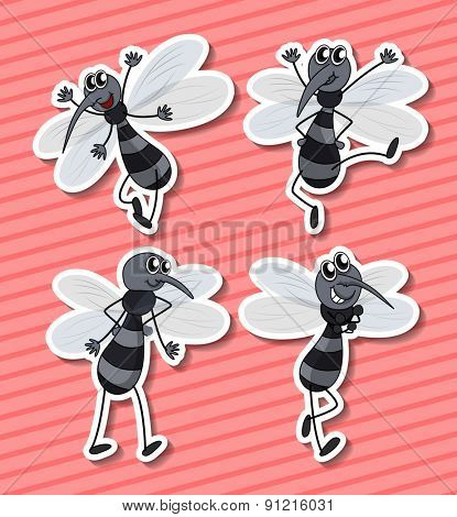 Four mosquito flying on pink background