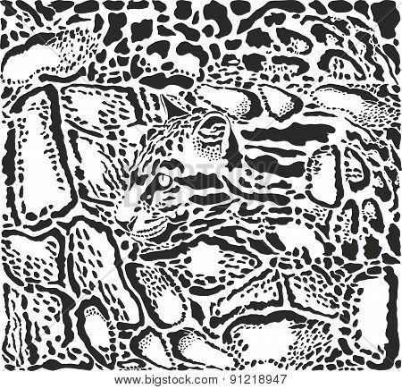 Background With Leopard Skins And Head.eps