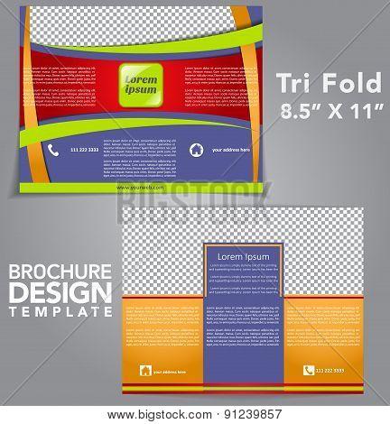 Tri Fold Brochure Vector Design