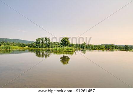 Reflecctions