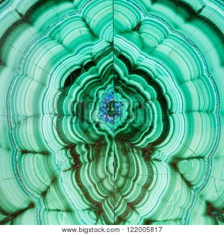 square natural texture background - polished surface of malachite mineral gem stone close up