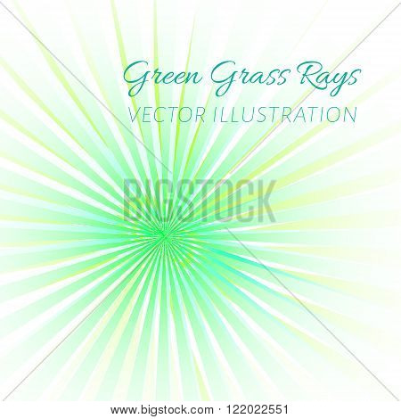 Green rays eco