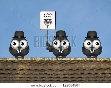 Comical beware the cat sign with watchful birds perched on a rooftop against a clear blue sky