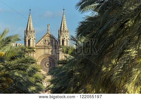 La Seu, Palma de Mallorca Cathedral front facade, gothic landmark architecture, religious monument behind palm trees at Balearic Islands
