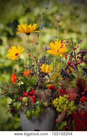 autumn flowers as straus before autumnal meadow